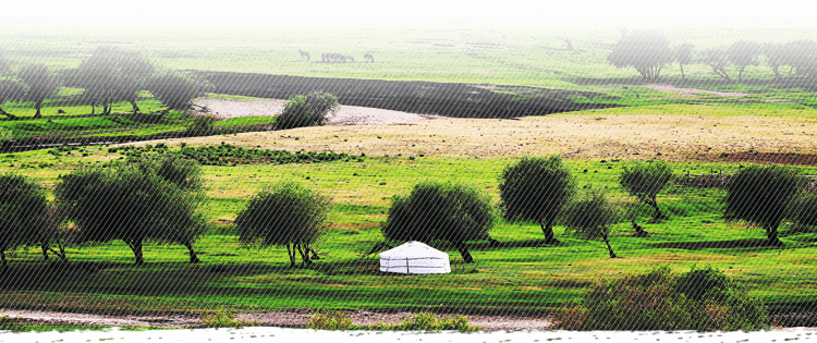 現代化農機唱響草原之歌