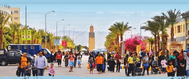 埃及戈壁中崛起的現代化園區